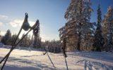 Skidagen i Trysil
